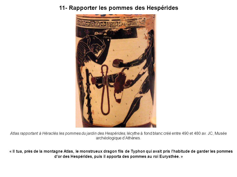 11- Rapporter les pommes des Hespérides Atlas rapportant à Héraclès les pommes du jardin des Hespérides, lécythe à fond blanc créé entre 490 et 480 av