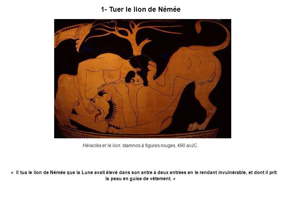 1- Tuer le lion de Némée Héraclès et le lion, stamnos à figures rouges, 490 avJC. « Il tua le lion de Némée que la Lune avait élevé dans son antre à d
