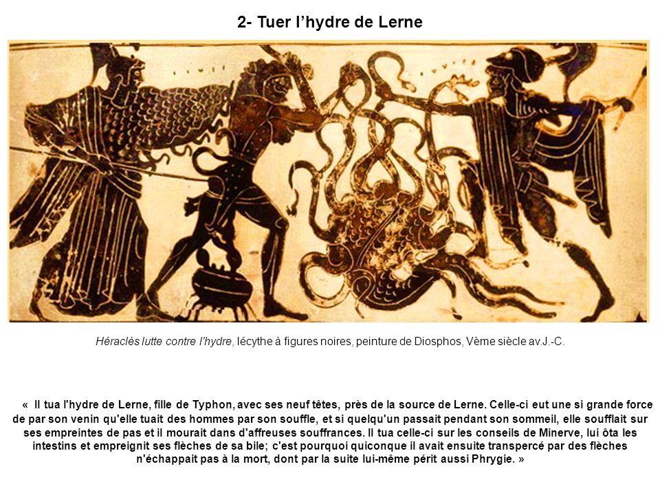 2- Tuer lhydre de Lerne Héraclès lutte contre l'hydre, lécythe à figures noires, peinture de Diosphos, Vème siècle av.J.-C. « Il tua l'hydre de Lerne,
