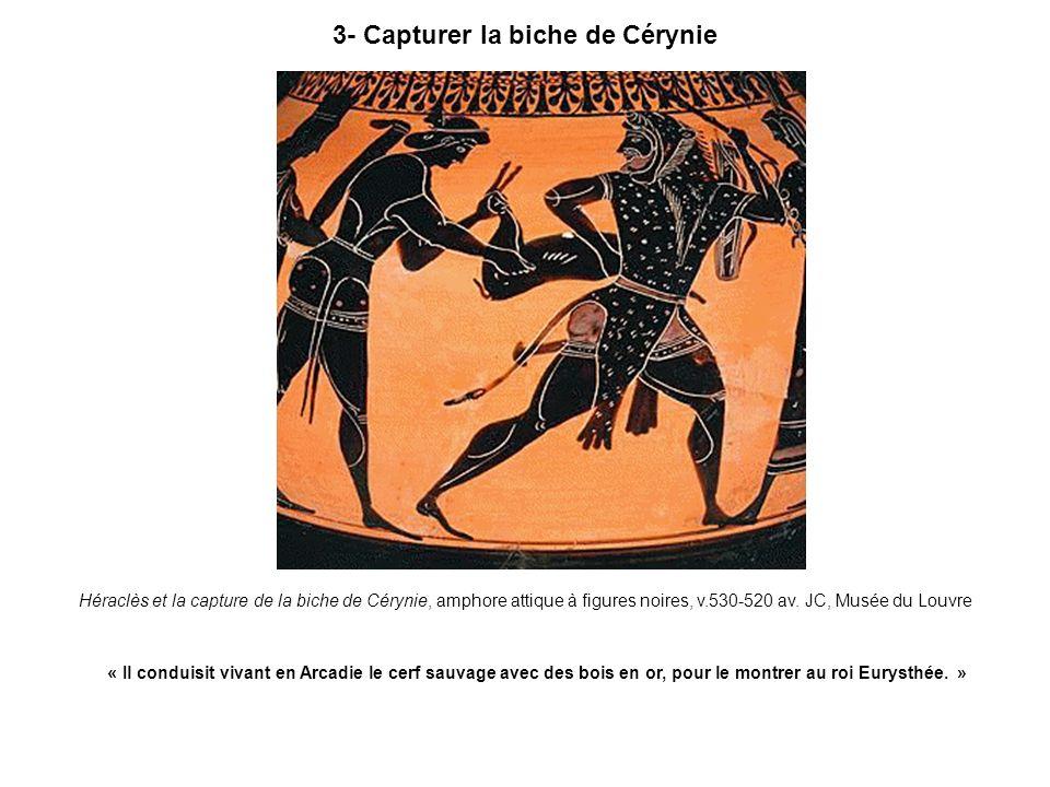 3- Capturer la biche de Cérynie Héraclès et la capture de la biche de Cérynie, amphore attique à figures noires, v.530-520 av. JC, Musée du Louvre « I