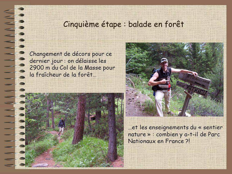 Cinquième étape : balade en forêt Changement de décors pour ce dernier jour : on délaisse les 2900 m du Col de la Masse pour la fraîcheur de la forêt…