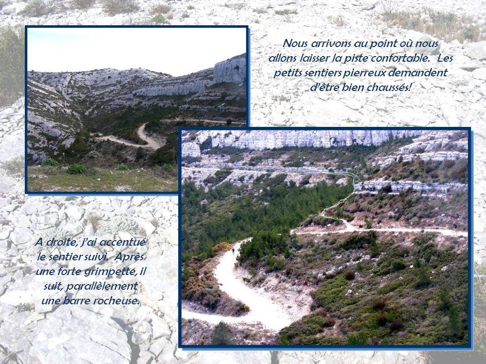 Toutes les collines autour de Marseille sont formées dune roche blanche, le calcaire urgonien. Elles sont disposées en couches, les strates. Cette roc