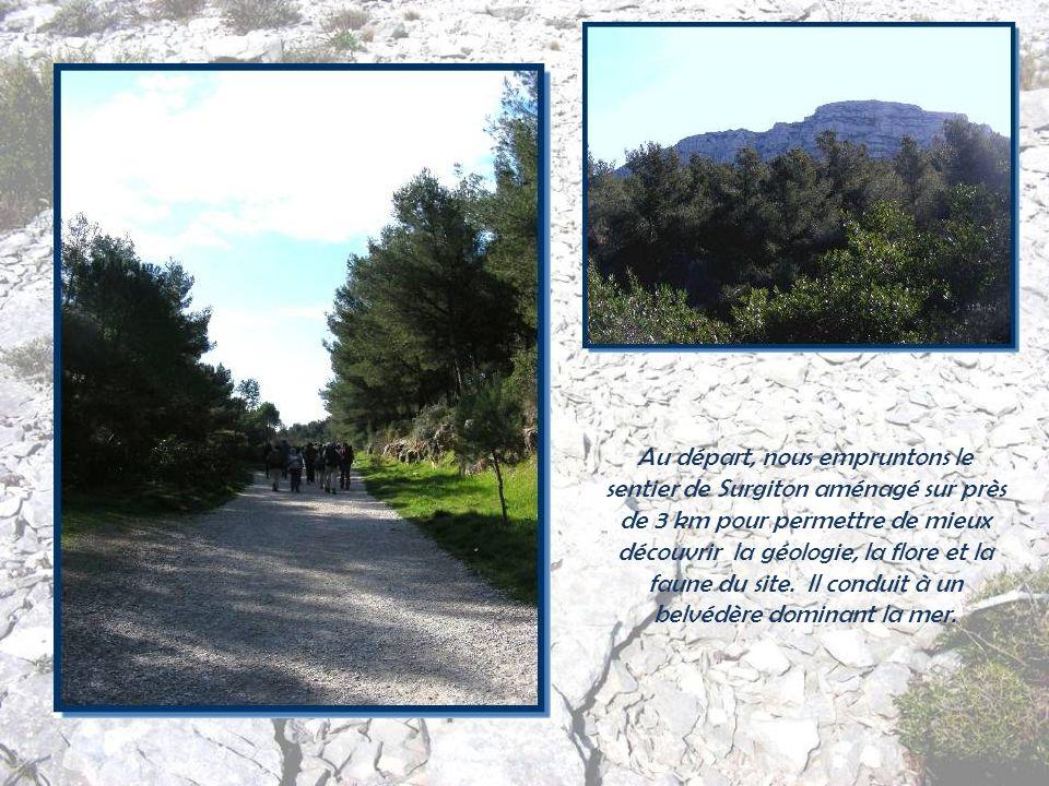 Mais ce lieu est, avant tout, un massif sans urbanisation qui abrite les calanques de Morgiou et Sugiton et des chaînes de crêtes doù la vue est épous