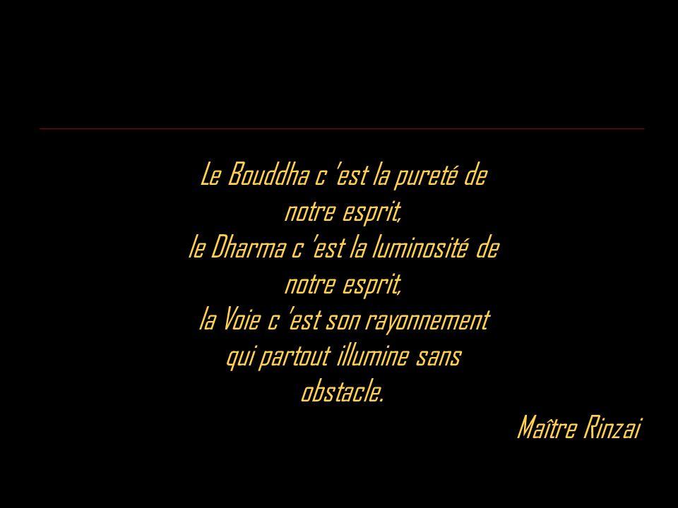 Le Bouddha c est la pureté de notre esprit, le Dharma c est la luminosité de notre esprit, la Voie c est son rayonnement qui partout illumine sans obs