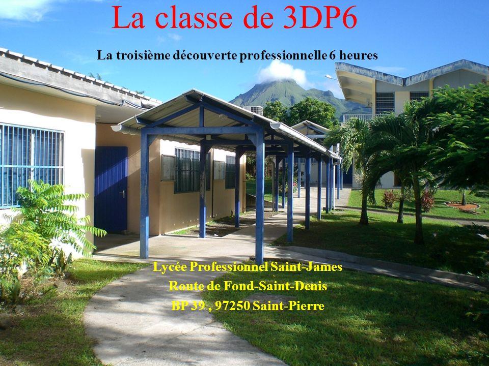 La classe de 3DP6 La troisième découverte professionnelle 6 heures Lycée Professionnel Saint-James Route de Fond-Saint-Denis BP 39, 97250 Saint-Pierre