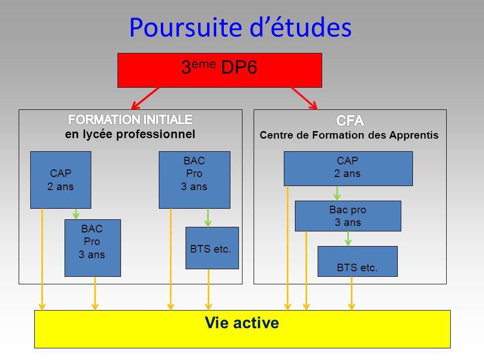 Poursuite détudes 3 ème DP6 BAC Pro 3 ans CAP 2 ans Vie active BTS etc. CAP 2 ans Bac pro 3 ans BTS etc. BAC Pro 3 ans