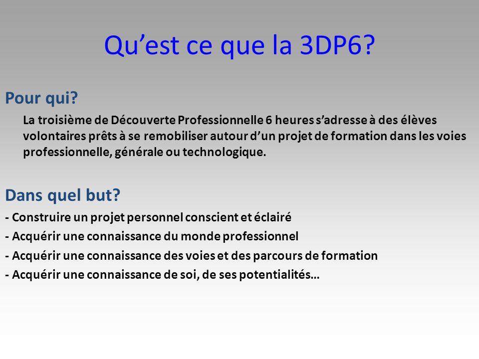 Contenu et organisation des enseignements La 3DP6 est une classe de troisième Les enseignements obligatoires sont les mêmes quen collège seuls les enseignements optionnels (langue vivante 2 et matière optionnelle) ont été modifiés afin dintégrer le module de découverte professionnelle.