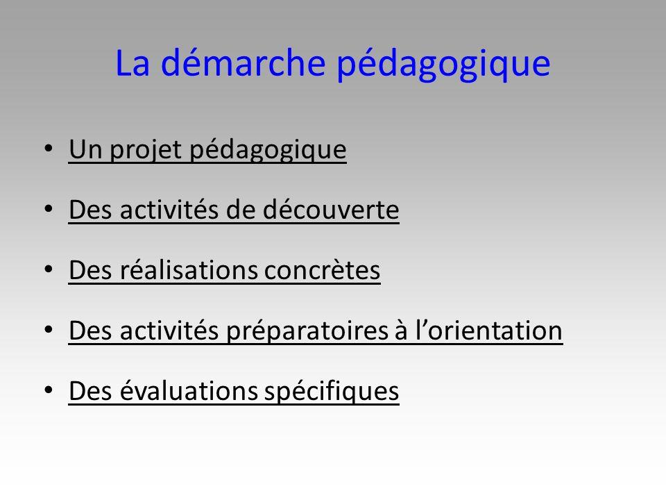 La démarche pédagogique Un projet pédagogique Des activités de découverte Des réalisations concrètes Des activités préparatoires à lorientation Des év
