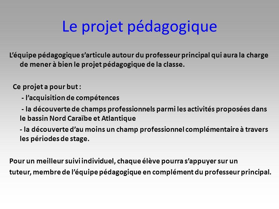 Le projet pédagogique Léquipe pédagogique sarticule autour du professeur principal qui aura la charge de mener à bien le projet pédagogique de la clas