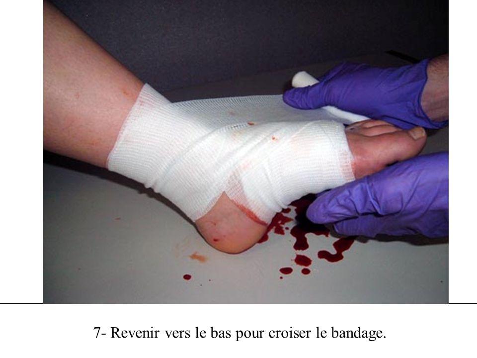 7- Terminer le bandage au point de départ, près des extrémités.