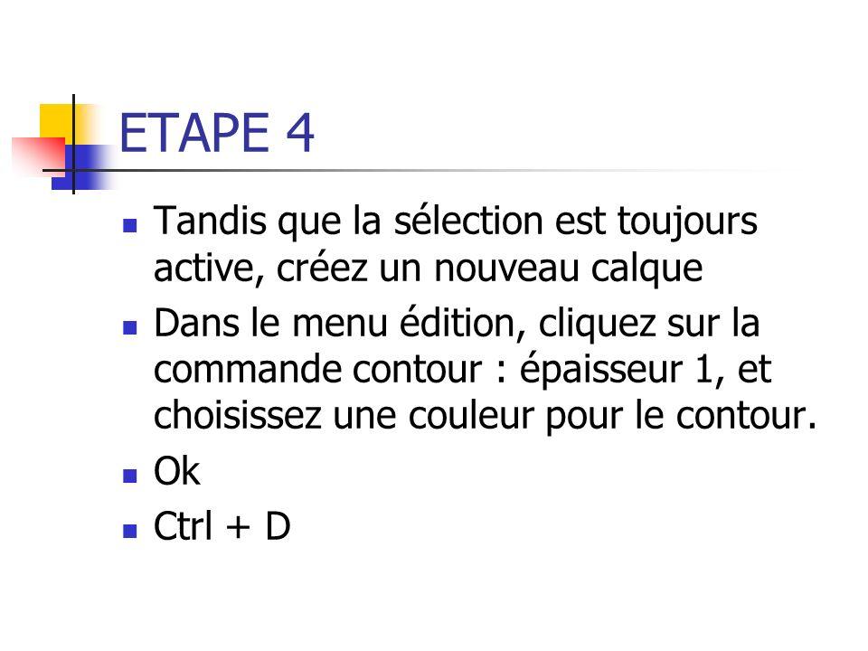 ETAPE 4 Tandis que la sélection est toujours active, créez un nouveau calque Dans le menu édition, cliquez sur la commande contour : épaisseur 1, et c