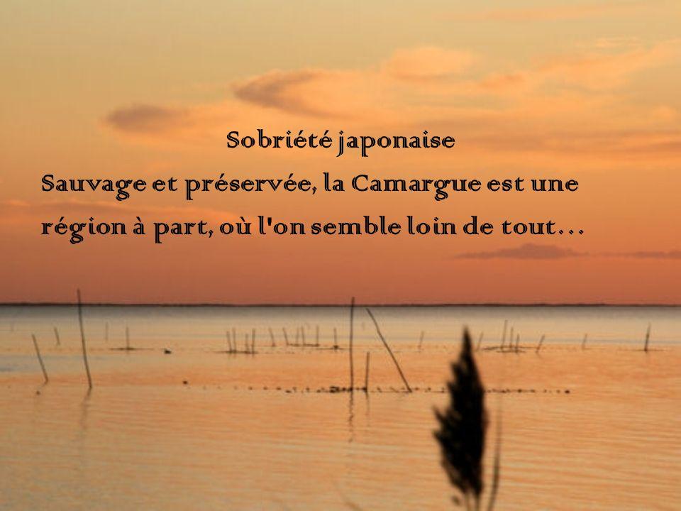 Sobriété japonaise Sauvage et préservée, la Camargue est une région à part, où l'on semble loin de tout…
