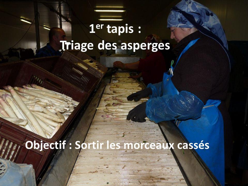 1 er tapis : Triage des asperges Objectif : Sortir les morceaux cassés