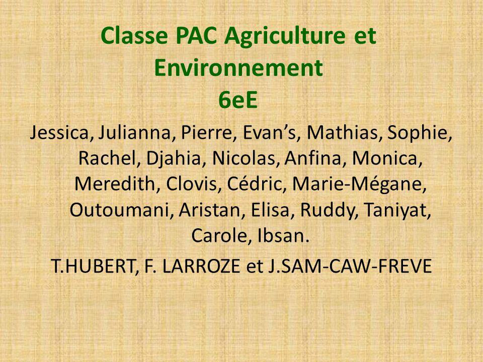Classe PAC Agriculture et Environnement 6eE Jessica, Julianna, Pierre, Evans, Mathias, Sophie, Rachel, Djahia, Nicolas, Anfina, Monica, Meredith, Clov