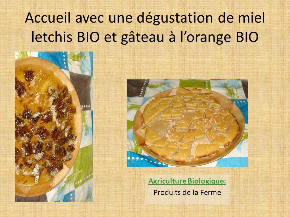 Accueil avec une dégustation de miel letchis BIO et gâteau à lorange BIO Agriculture Biologique: Produits de la Ferme