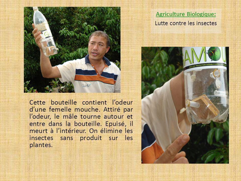 M.HUBERT nous explique comment on récupère le miel avec un extracteur.