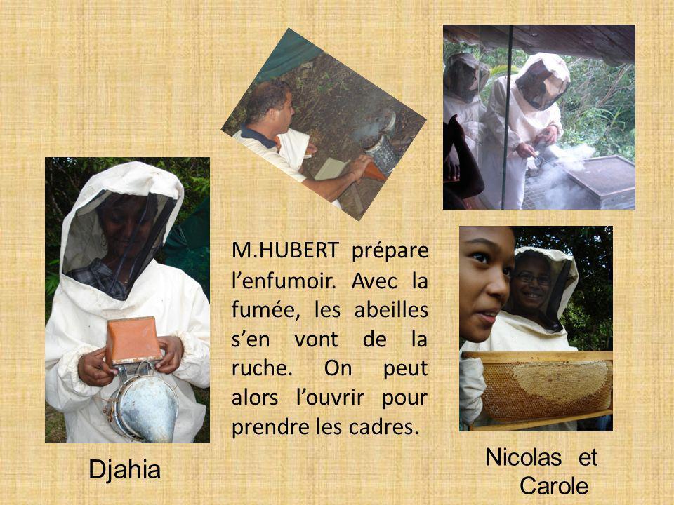 Djahia Nicolas et Carole M.HUBERT prépare lenfumoir. Avec la fumée, les abeilles sen vont de la ruche. On peut alors louvrir pour prendre les cadres.