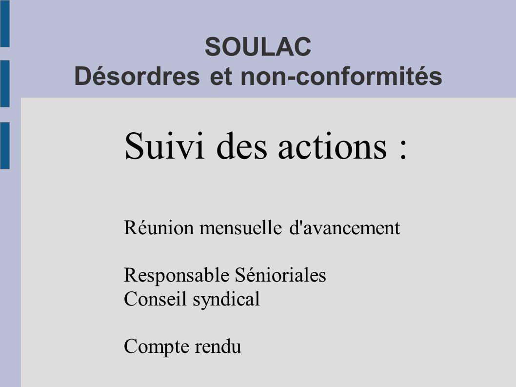 SOULAC Désordres et non-conformités Suivi des actions : Réunion mensuelle d'avancement Responsable Sénioriales Conseil syndical Compte rendu