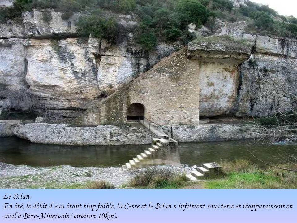 Vue du village et de ses remparts.