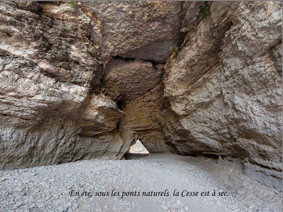 Pont naturel au pied de Minerve – longueur 240 mètres.