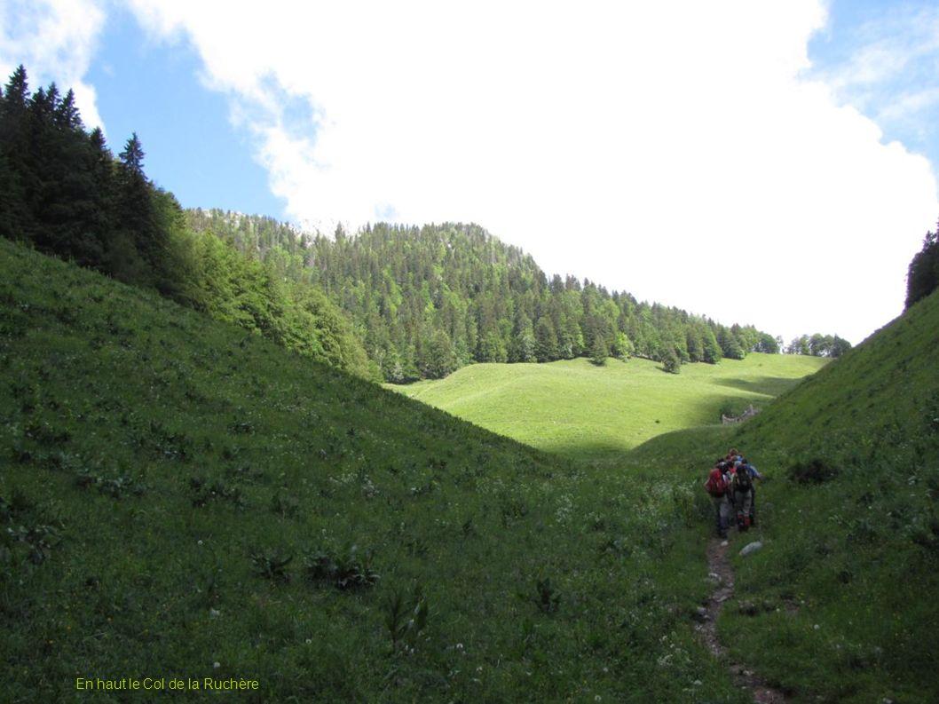 Le Col de Mauvernay