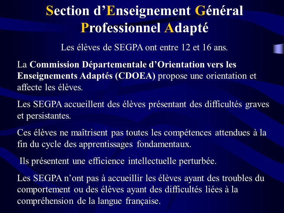 Section dEnseignement Général Professionnel Adapté Les élèves de SEGPA ont entre 12 et 16 ans.