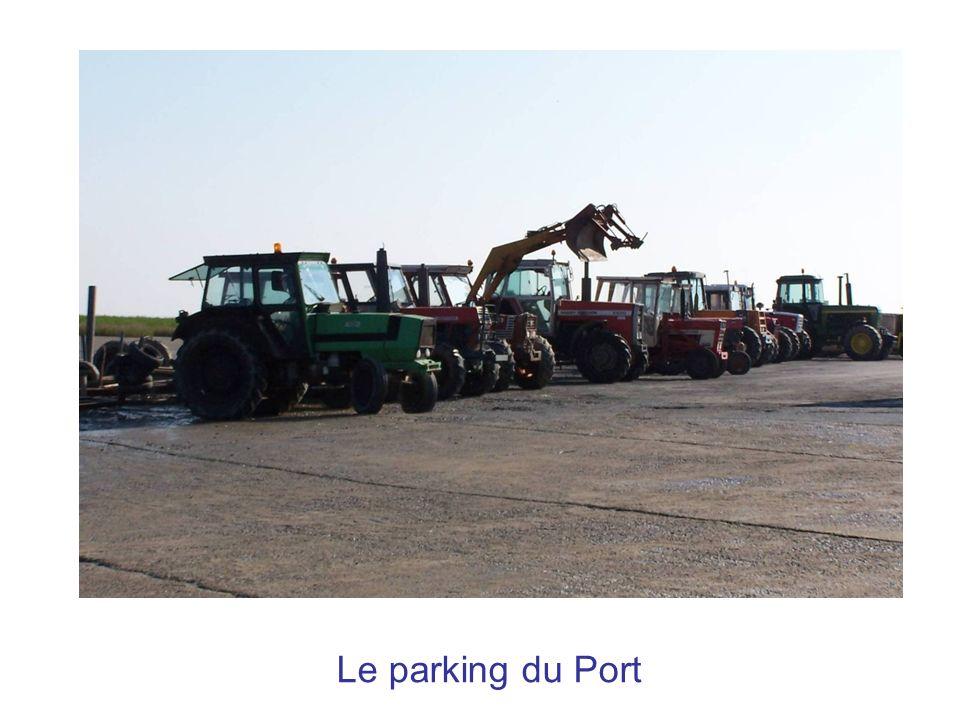 Une journée de mytiliculture Au port du Pavé à Charron nom du village le plus au nord du département de la Charente-Maritime.