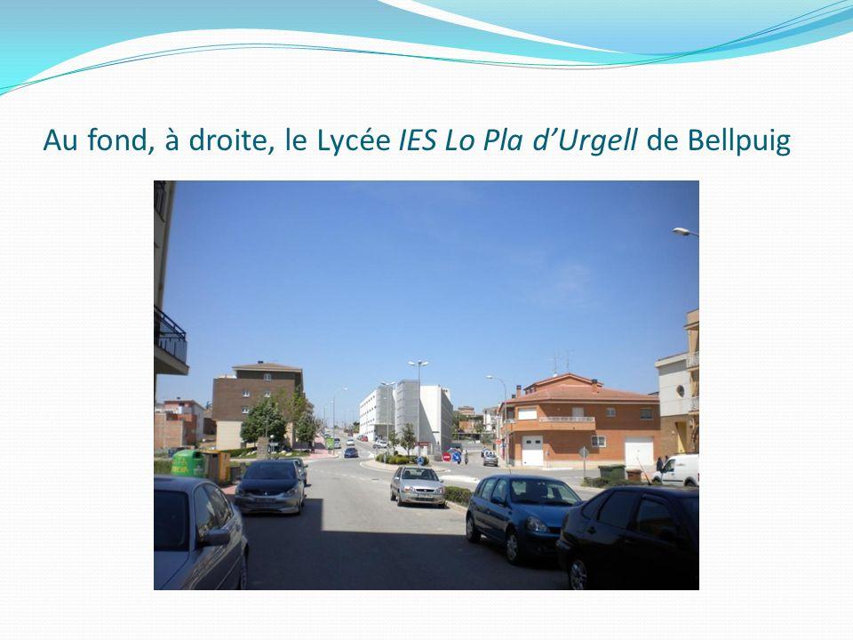 Au fond, à droite, le Lycée IES Lo Pla dUrgell de Bellpuig