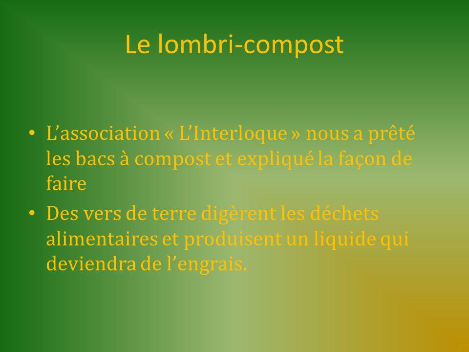 Le lombri-compost Lassociation « LInterloque » nous a prêté les bacs à compost et expliqué la façon de faire Des vers de terre digèrent les déchets al
