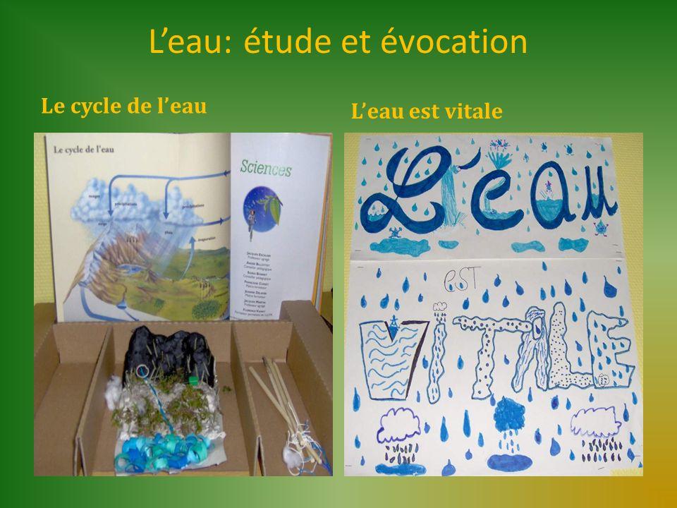 Leau: étude et évocation Le cycle de leau Leau est vitale