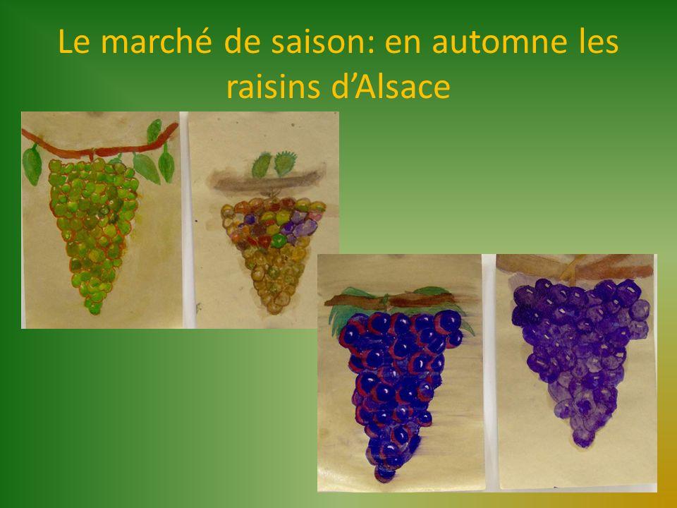 Le marché de saison: en automne les raisins dAlsace