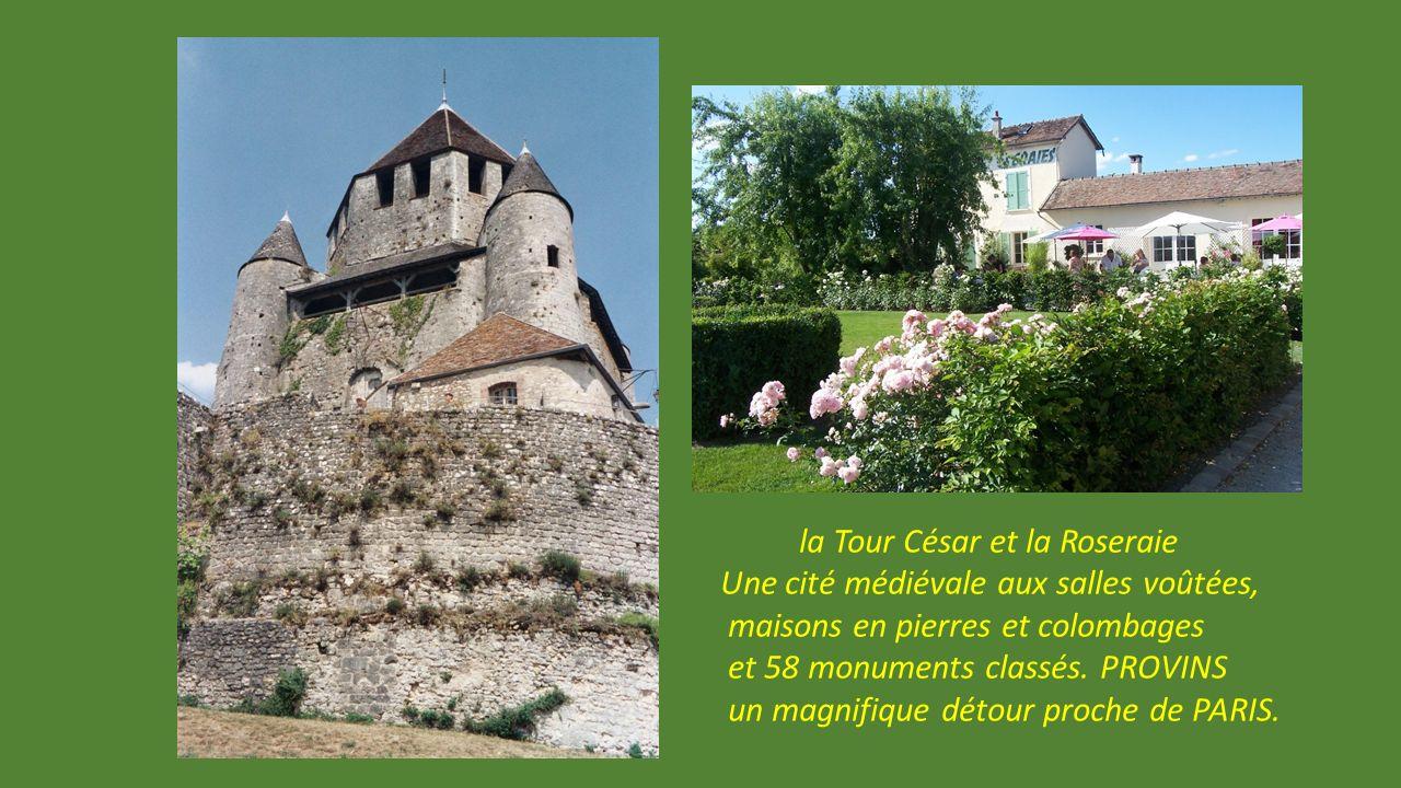 Musée dans la Maison romane et carte postale de Provins.