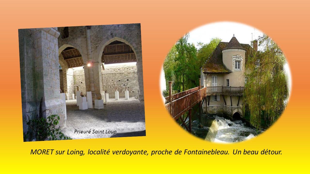 Porte de Samois Porte de Bourgogne Ville verdoyante avec remparts tours et donjons.