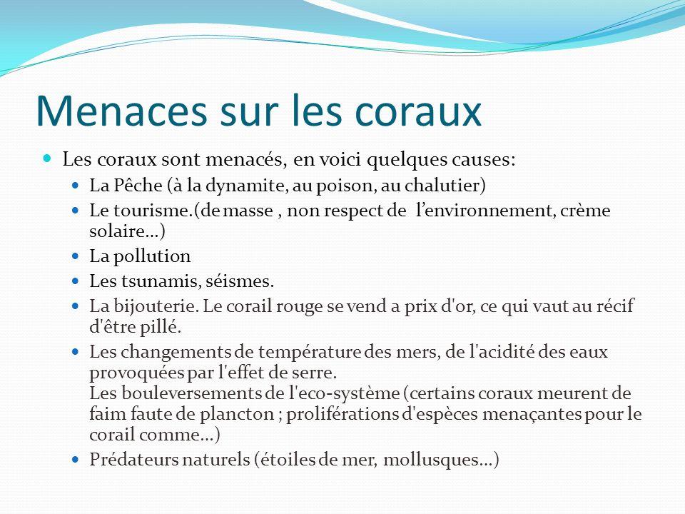 Menaces sur les coraux Les coraux sont menacés, en voici quelques causes: La Pêche (à la dynamite, au poison, au chalutier) Le tourisme.(de masse, non