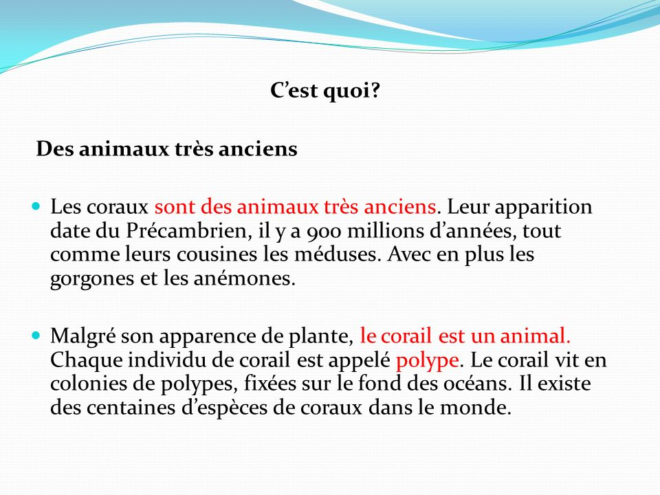 Cest quoi? Des animaux très anciens Les coraux sont des animaux très anciens. Leur apparition date du Précambrien, il y a 900 millions dannées, tout c