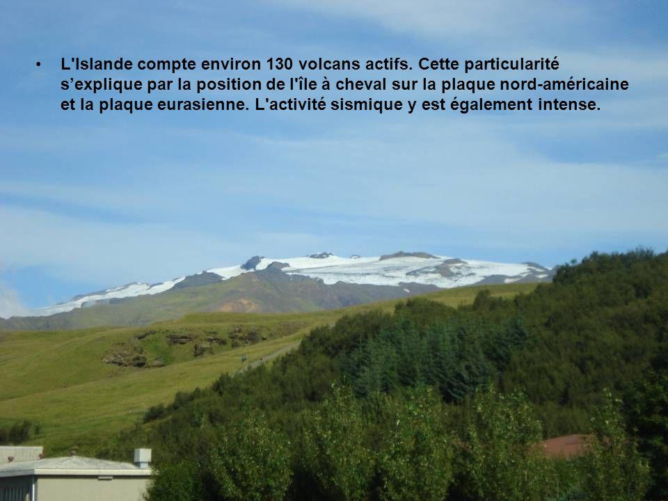 Sur le flanc Nord de la calotte glaciaire, les glaciers de Steinsholtsjökull et Gígujökull s'individualisent de la calotte glaciaire pour descendre ju