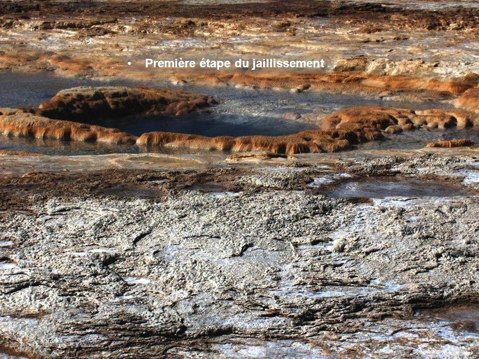 Le grand nombre de geysers que l'on trouve en Islande s'explique aussi par la présence de nombreux volcans, l'eau étant chauffée en profondeur par sa