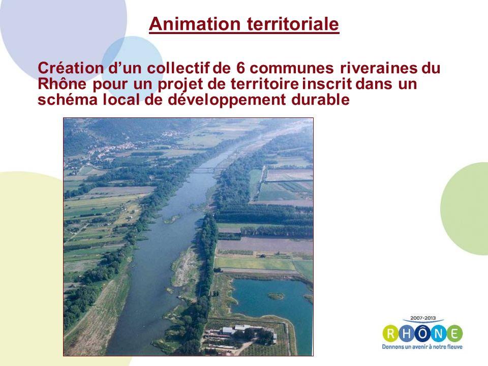 Animation territoriale Création dun collectif de 6 communes riveraines du Rhône pour un projet de territoire inscrit dans un schéma local de développement durable