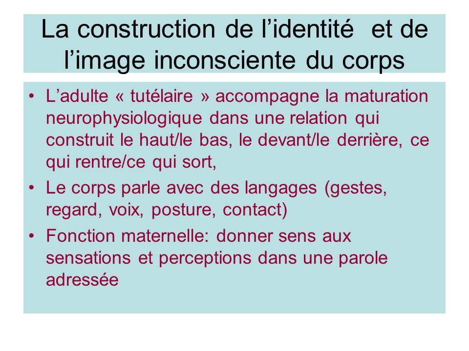La construction de lidentité et de limage inconsciente du corps Ladulte « tutélaire » accompagne la maturation neurophysiologique dans une relation qu