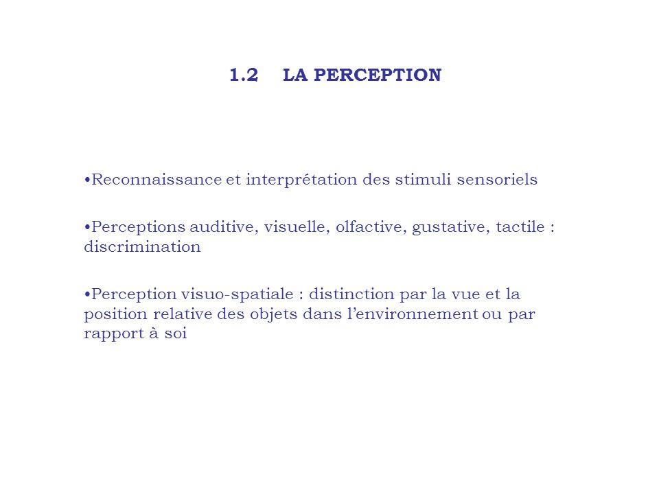 1.2 LA PERCEPTION Reconnaissance et interprétation des stimuli sensoriels Perceptions auditive, visuelle, olfactive, gustative, tactile : discriminati