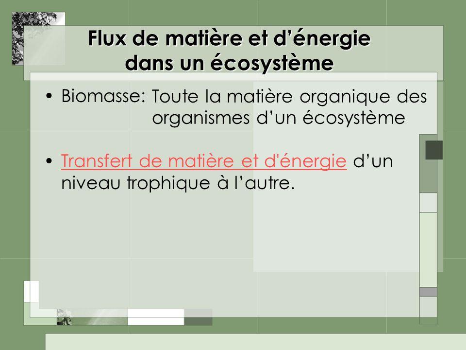 Flux de matière et dénergie dans un écosystème Biomasse: Transfert de matière et d'énergie dun niveau trophique à lautre.Transfert de matière et d'éne