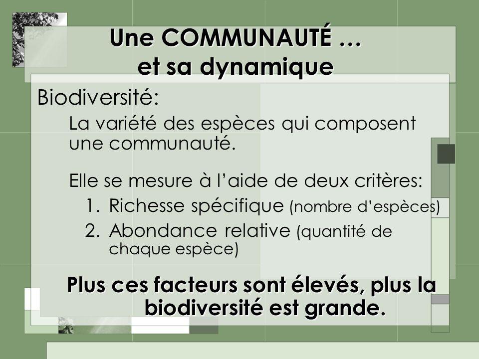 Une COMMUNAUTÉ … et sa dynamique Biodiversité: La variété des espèces qui composent une communauté. Elle se mesure à laide de deux critères: 1.Richess