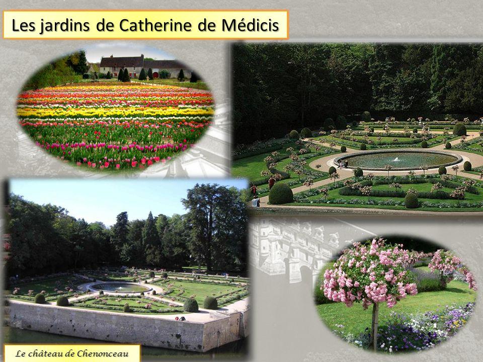 Les jardins du château sont extraordinaires. Ils offrent une multitude despèces générales. On compte 2 jardins principaux Les jardins de Diane Poitier