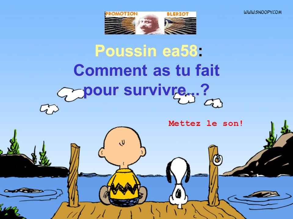 Poussin ea58: Comment as tu fait Poussin ea58: Comment as tu fait pour survivre...? Mettez le son!