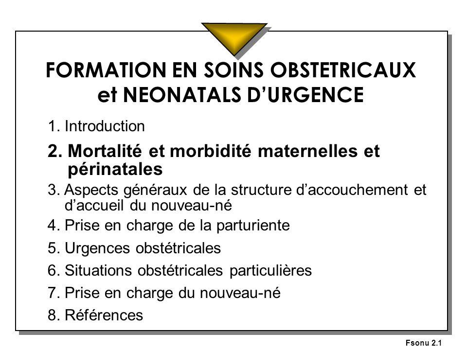 Fsonu 2.1 FORMATION EN SOINS OBSTETRICAUX et NEONATALS DURGENCE 1. Introduction 2. Mortalité et morbidité maternelles et périnatales 3. Aspects généra