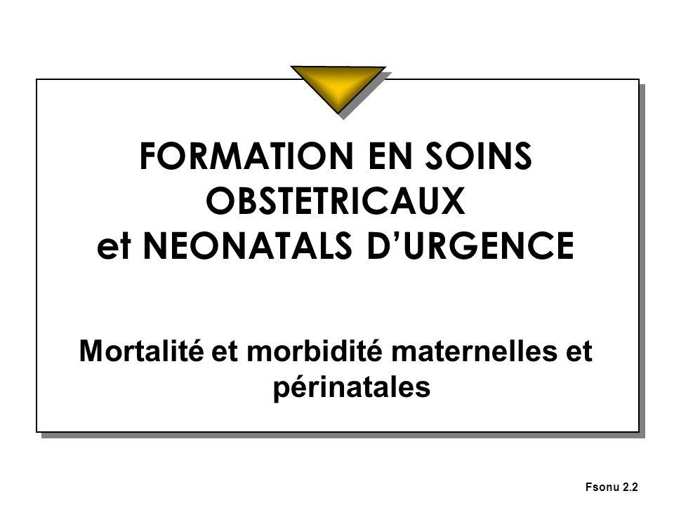 Fsonu 2.2 FORMATION EN SOINS OBSTETRICAUX et NEONATALS DURGENCE Mortalité et morbidité maternelles et périnatales