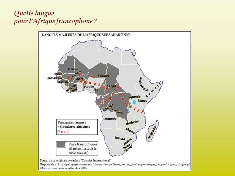 Pourquoi ne jamais profiter de langues transnationales .