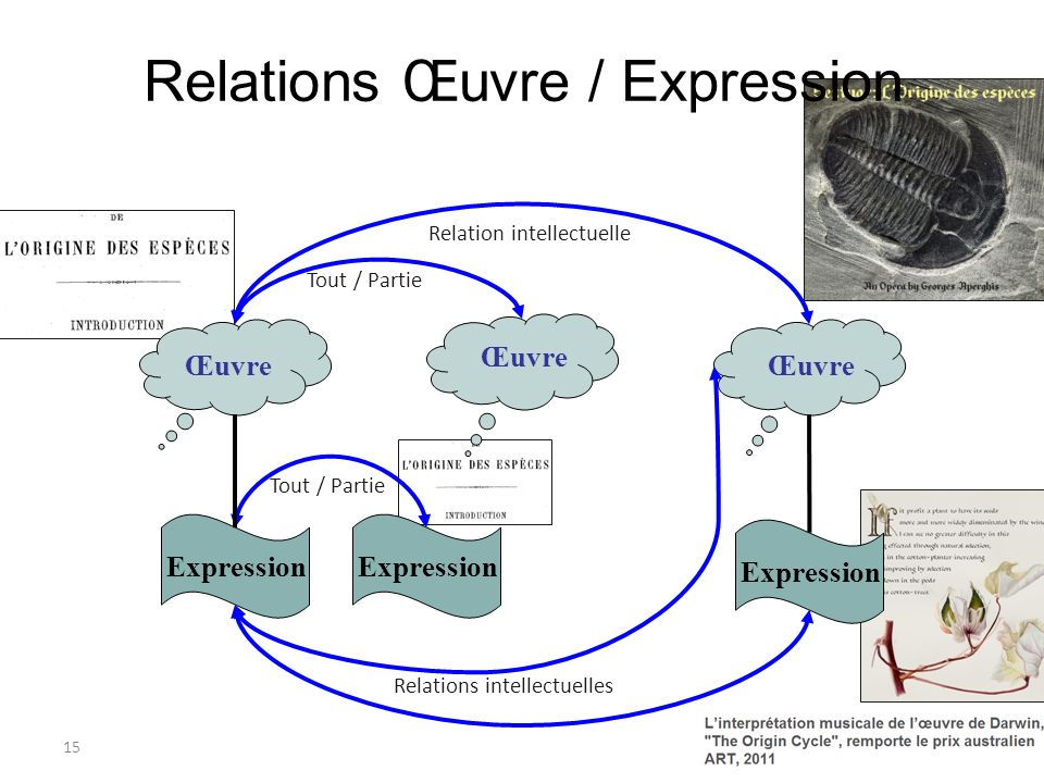15 Œuvre Expression Relation intellectuelle Relations intellectuelles Tout / Partie Relations Œuvre / Expression