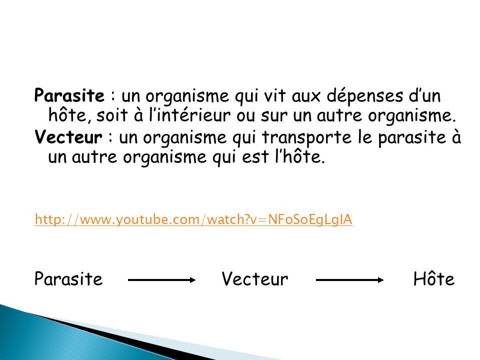 Parasite : un organisme qui vit aux dépenses dun hôte, soit à lintérieur ou sur un autre organisme.
