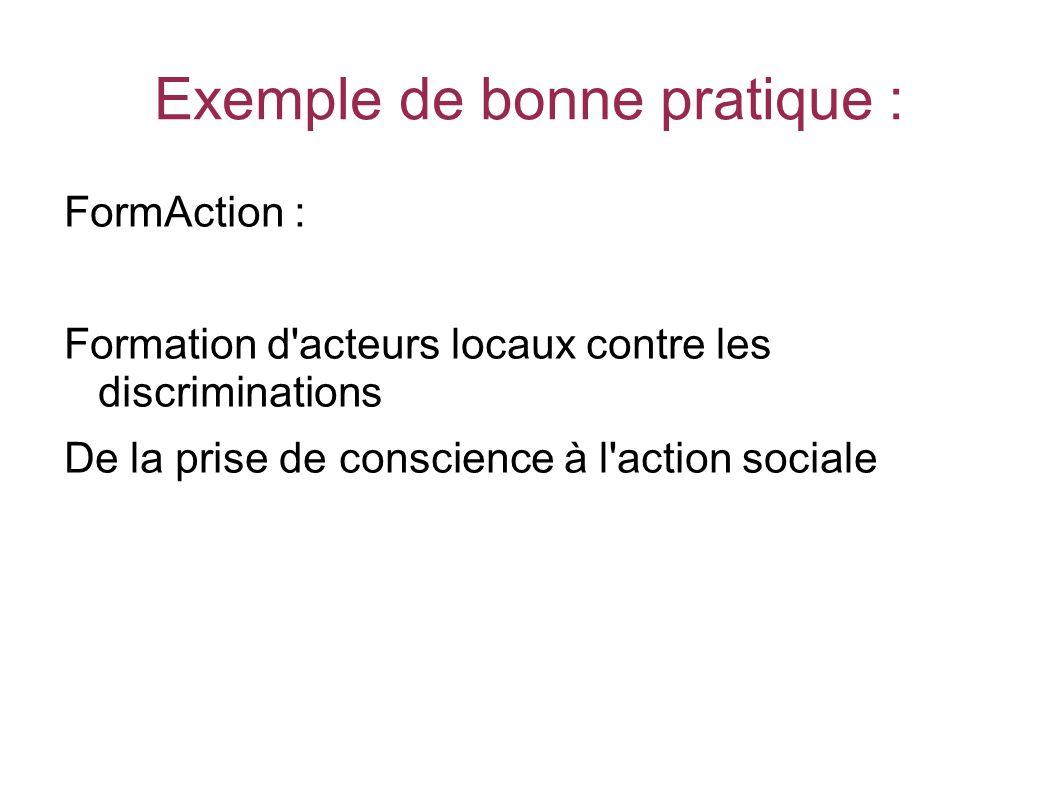 Exemple de bonne pratique : FormAction : Formation d acteurs locaux contre les discriminations De la prise de conscience à l action sociale